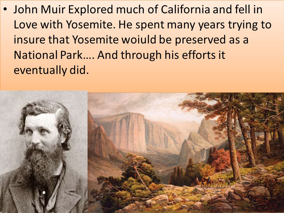 John Muir Explored much of California and fell in Love with Yosemite