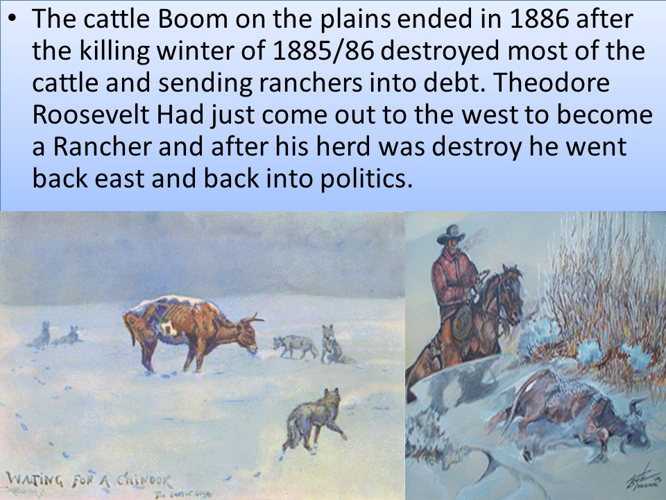 The cattle Boom on the plains ended in 1886 after the killing winter of 1885/86 destroyed most of the cattle and sending ranchers into debt.