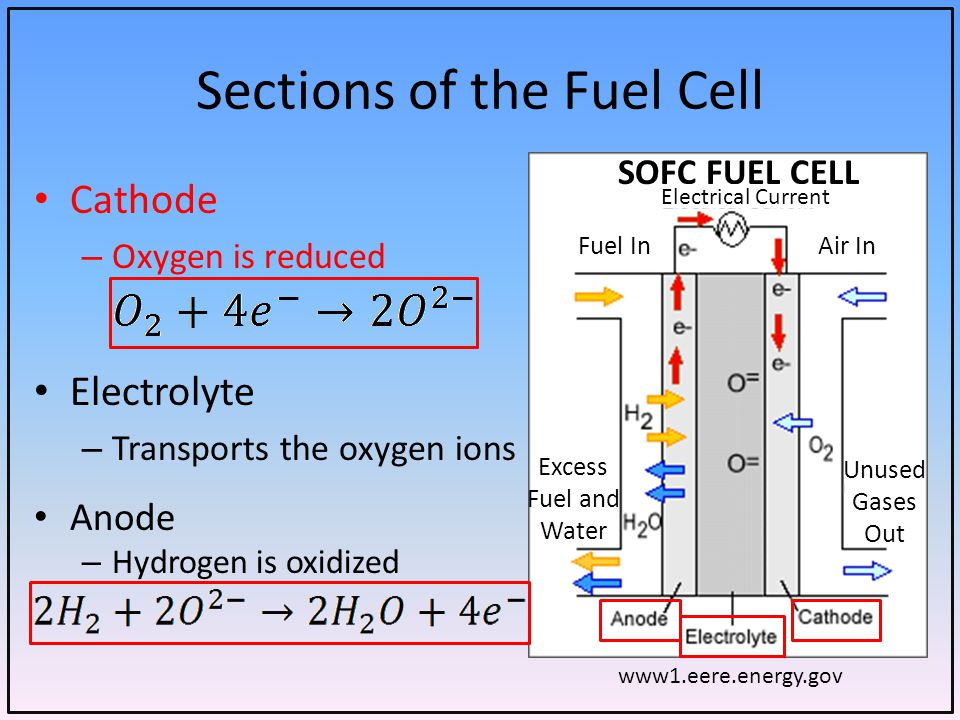 Sections of the Fuel Cell