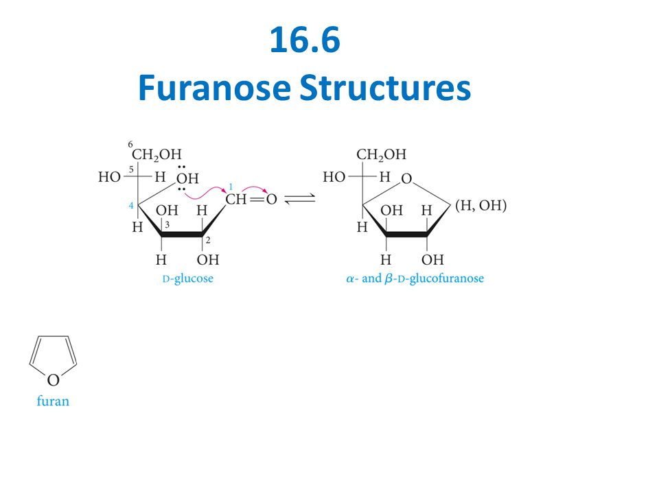 16.6 Furanose Structures
