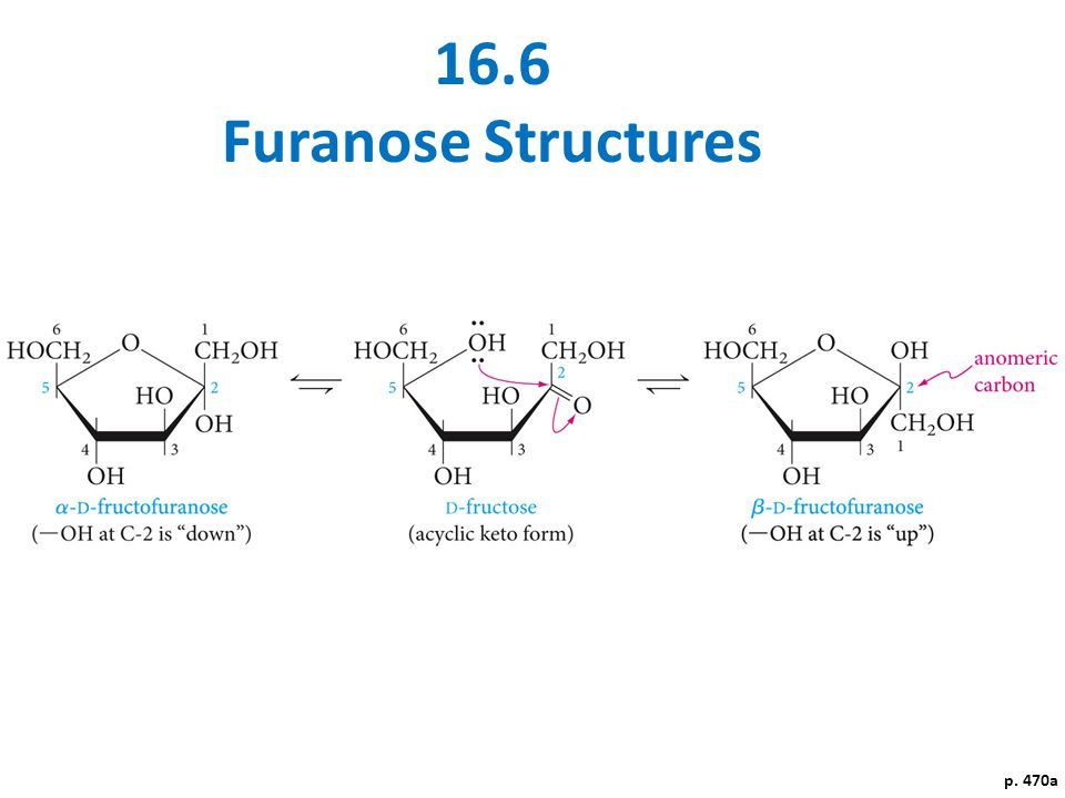 16.6 Furanose Structures p. 470a