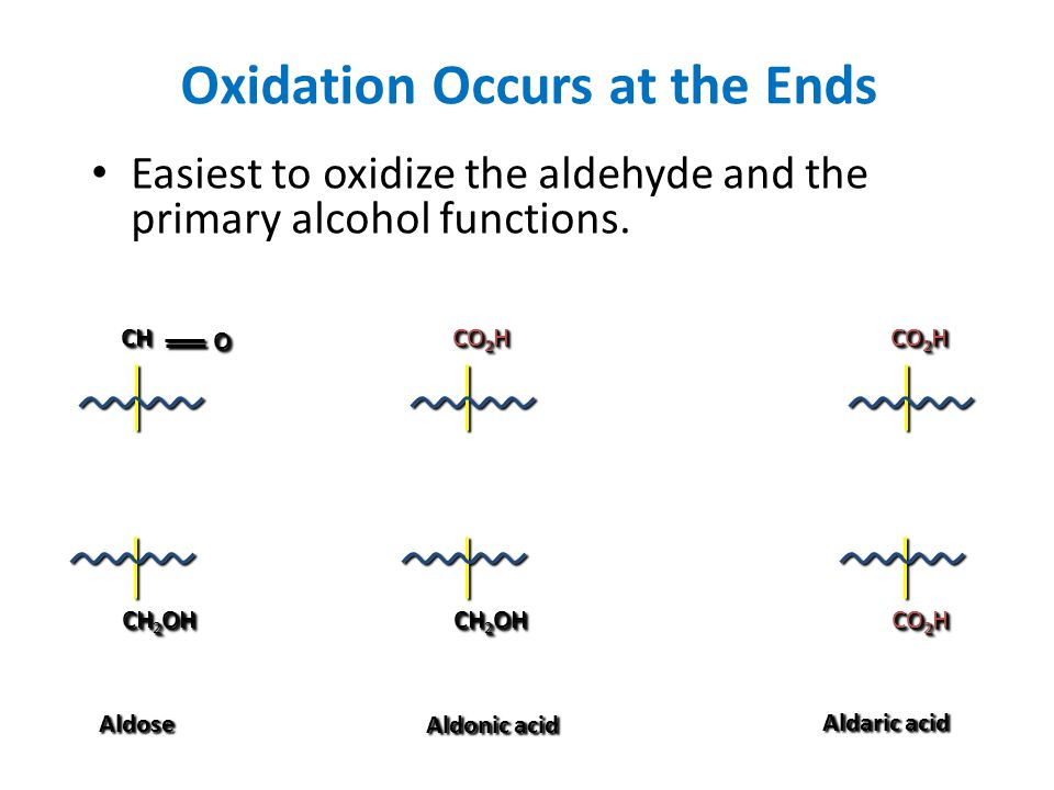 Oxidation Occurs at the Ends