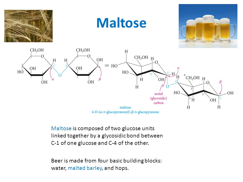Maltose Maltose is composed of two glucose units linked together by a glycosidic bond between C-1 of one glucose and C-4 of the other.