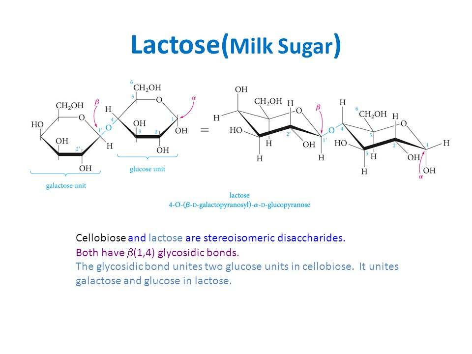 Lactose(Milk Sugar) Cellobiose and lactose are stereoisomeric disaccharides. Both have (1,4) glycosidic bonds.