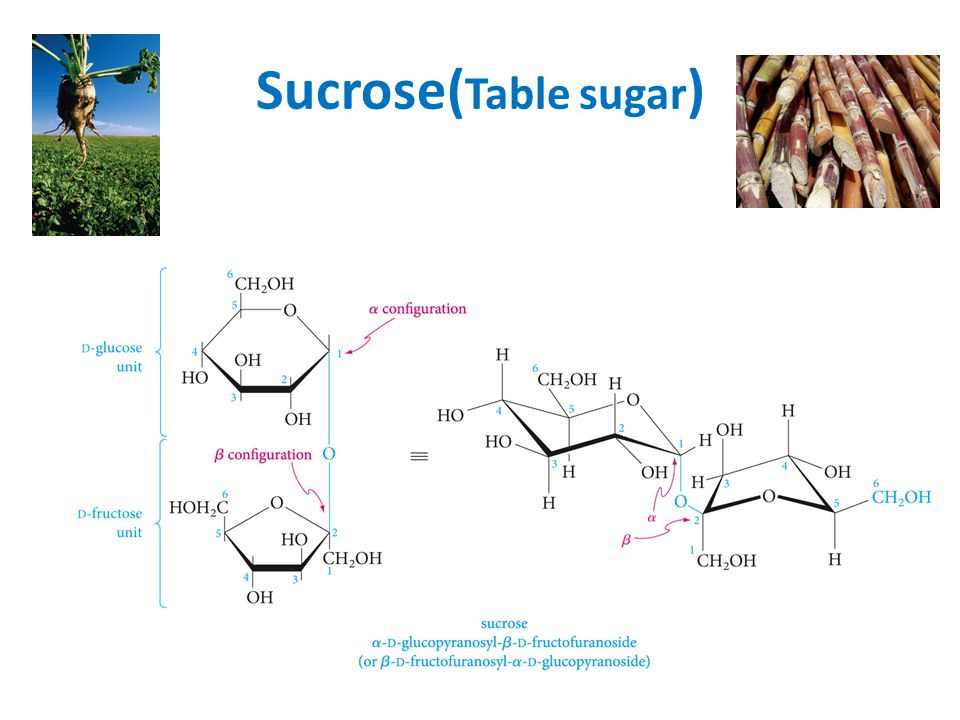 Sucrose(Table sugar)