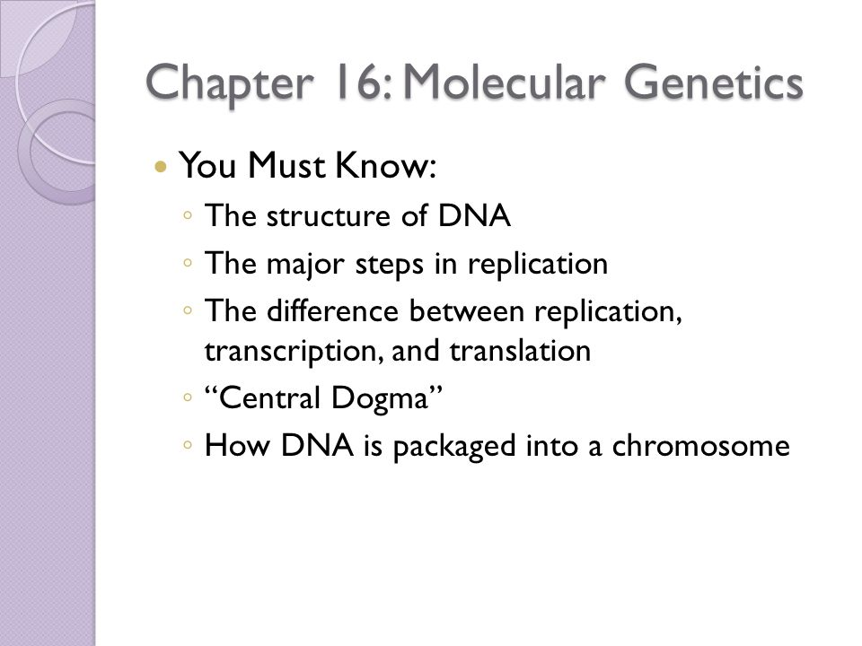 Chapter 16: Molecular Genetics