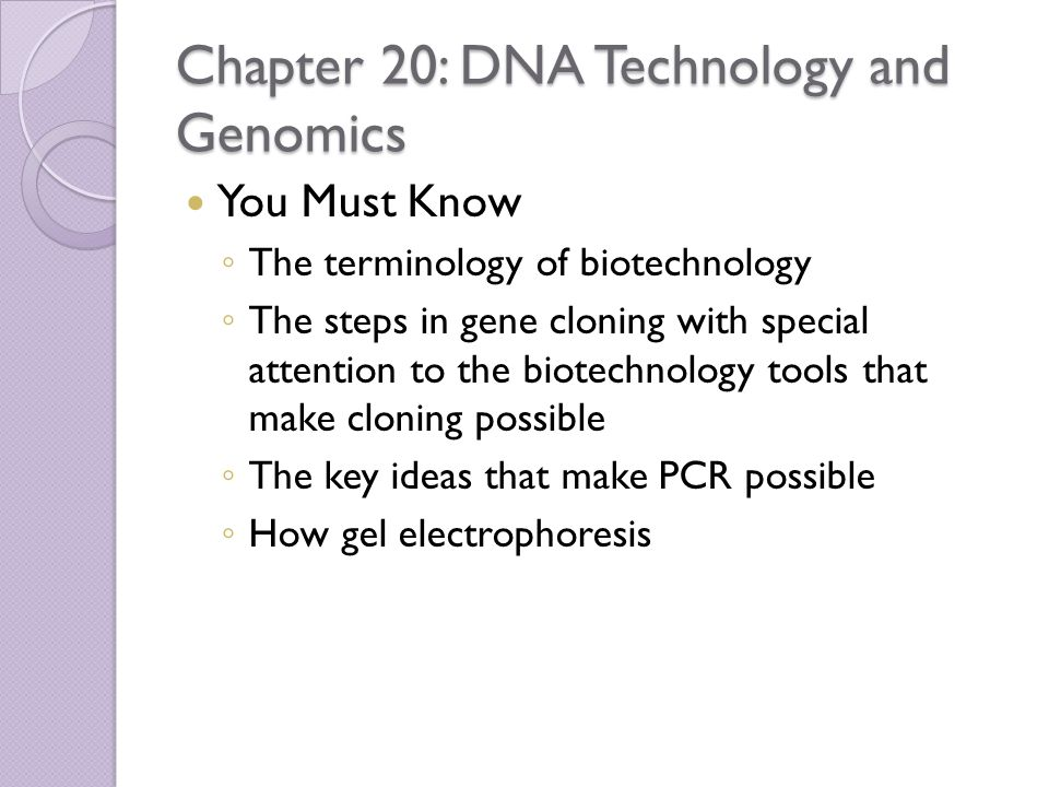 Chapter 20: DNA Technology and Genomics