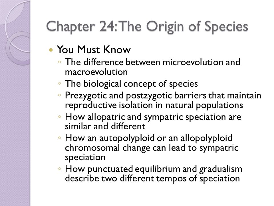 Chapter 24: The Origin of Species