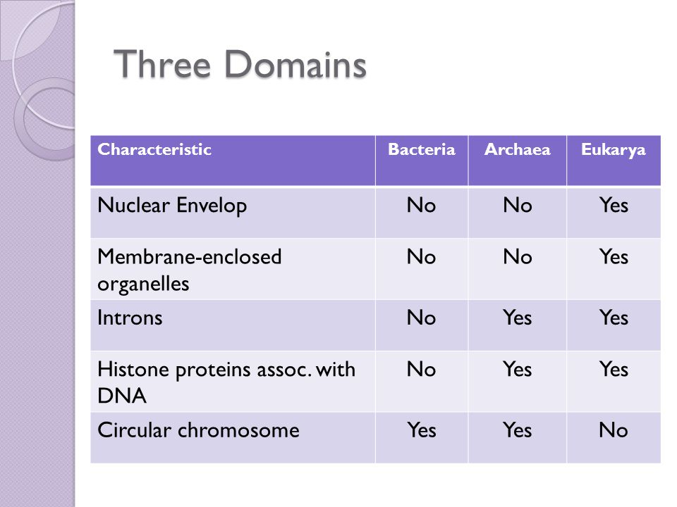 Three Domains Nuclear Envelop No Yes Membrane-enclosed organelles