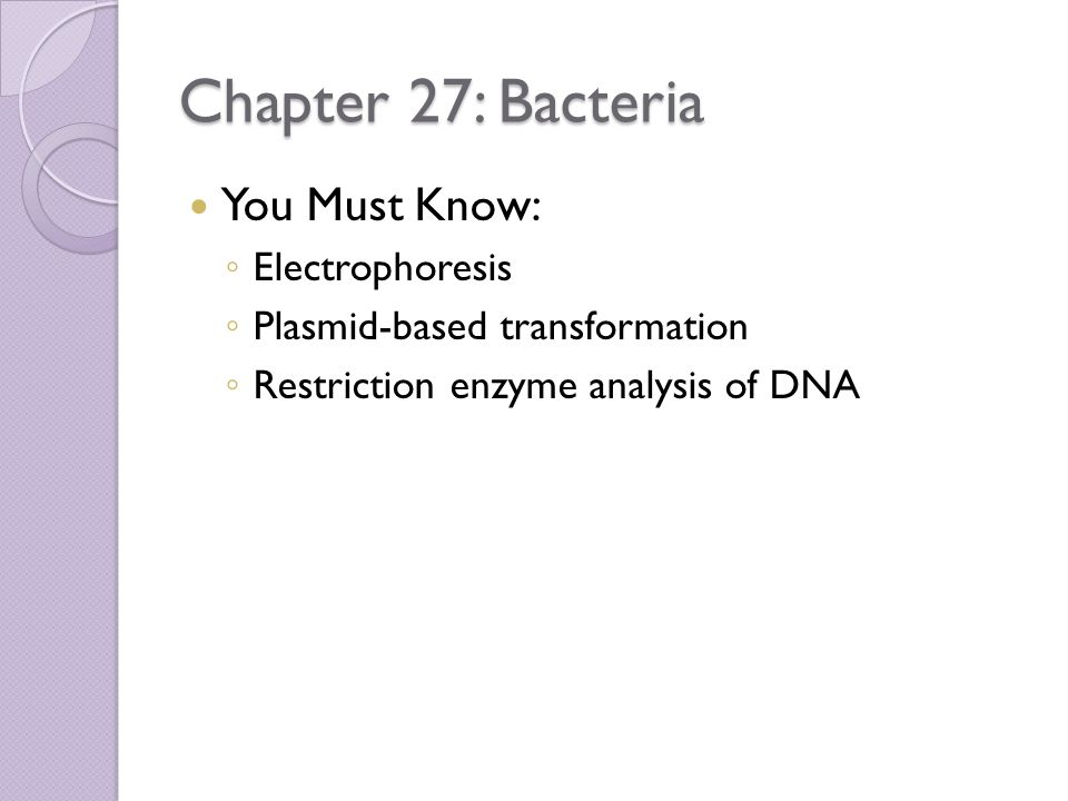 Chapter 27: Bacteria You Must Know: Electrophoresis
