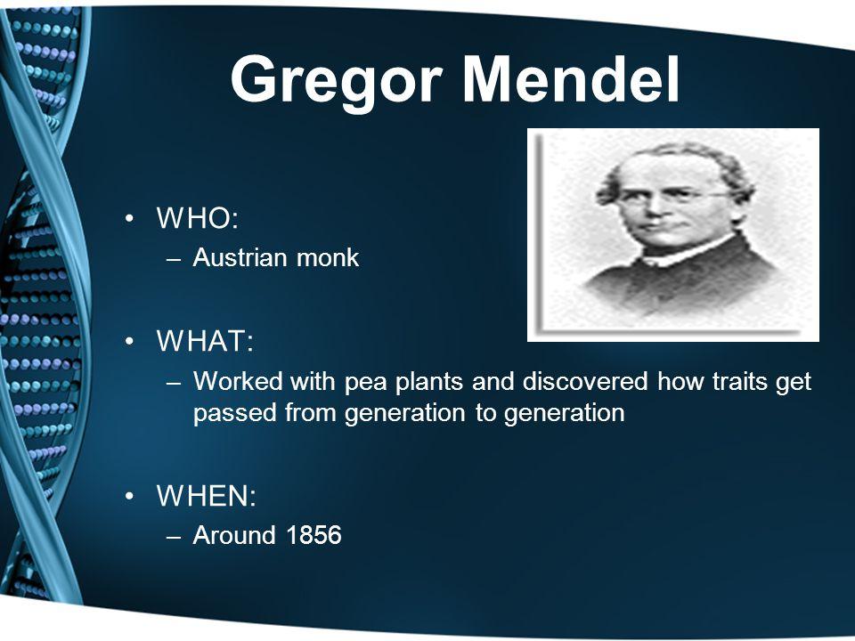 Gregor Mendel WHO: WHAT: WHEN: Austrian monk