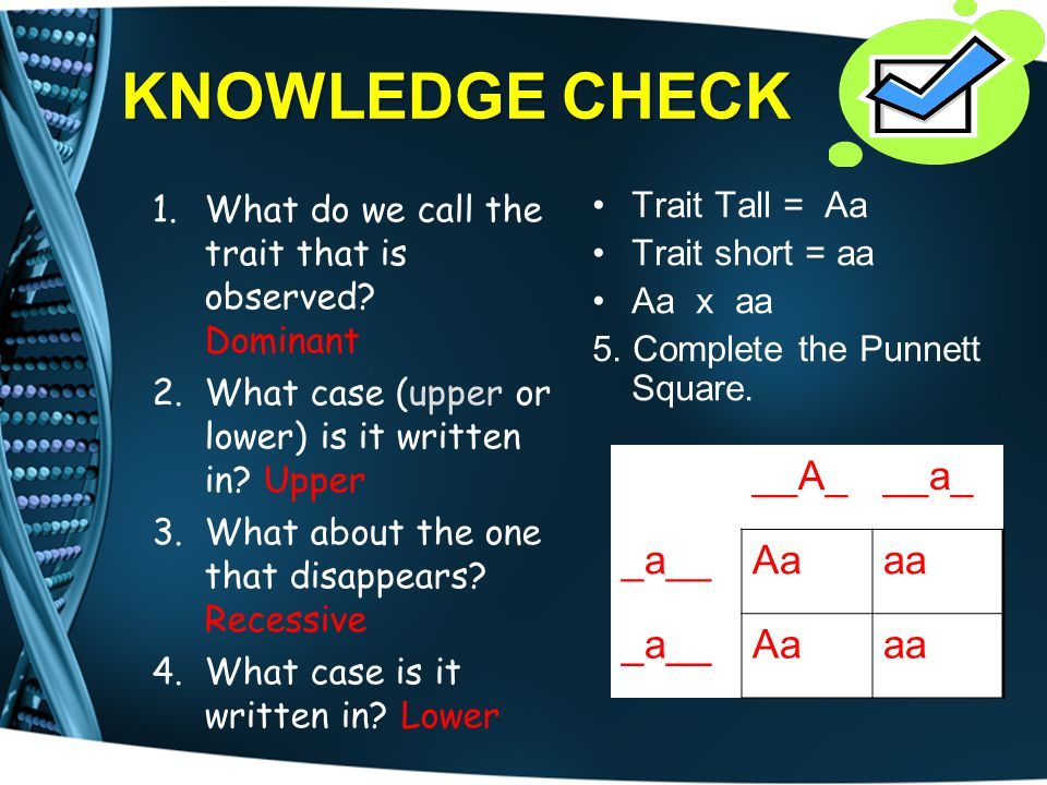 KNOWLEDGE CHECK __A_ __a_ _a__ Aa aa