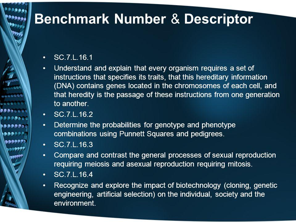 Benchmark Number & Descriptor