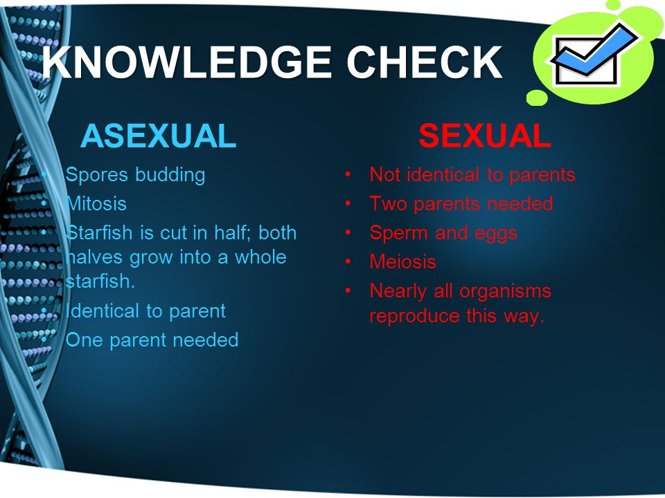 KNOWLEDGE CHECK ASEXUAL SEXUAL Spores budding Mitosis