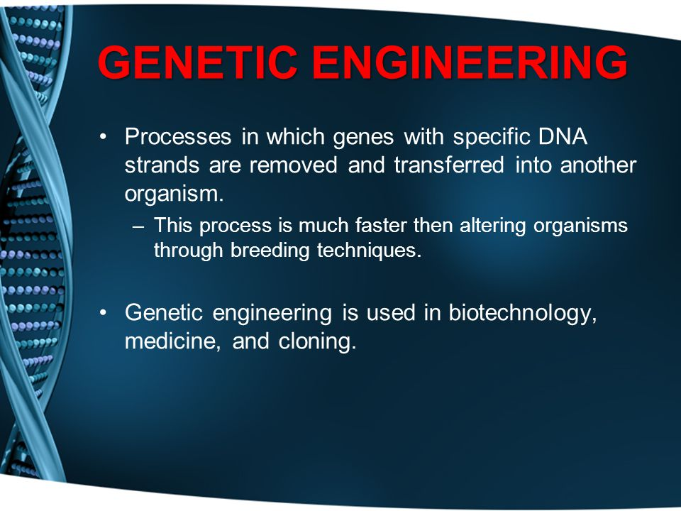 GENETIC ENGINEERING Processes in which genes with specific DNA strands are removed and transferred into another organism.