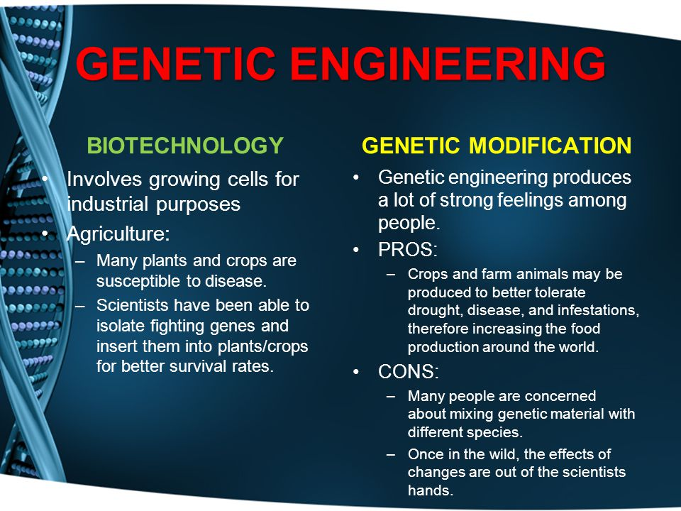 GENETIC ENGINEERING BIOTECHNOLOGY GENETIC MODIFICATION