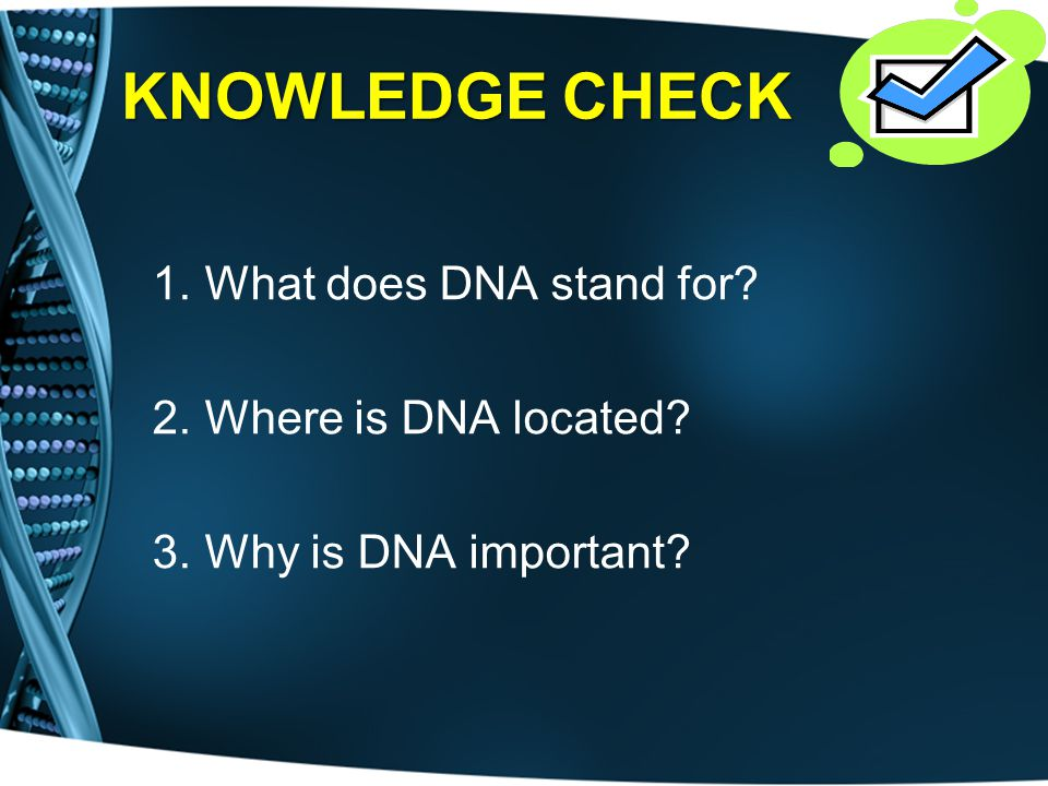 KNOWLEDGE CHECK What does DNA stand for Where is DNA located