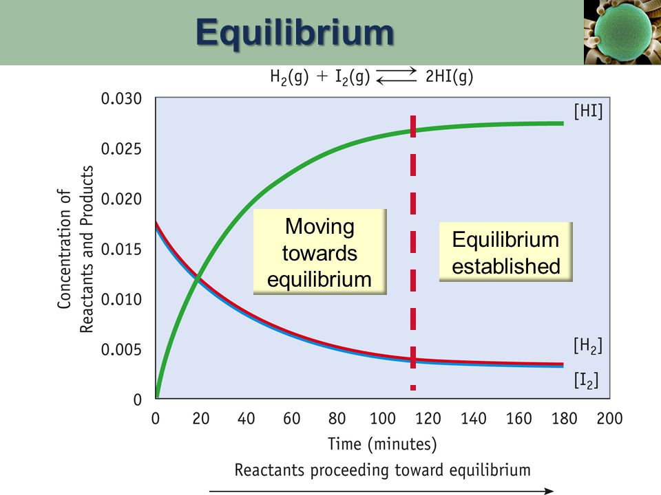 Equilibrium Moving towards equilibrium Equilibrium established