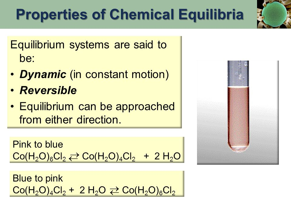 Properties of Chemical Equilibria
