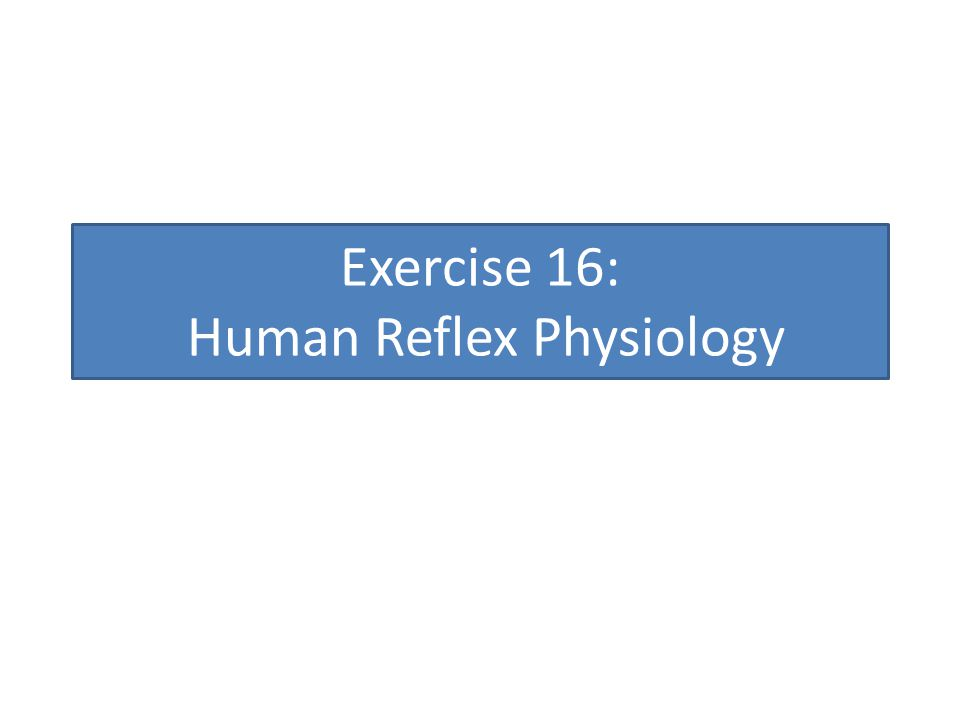Exercise 16: Human Reflex Physiology