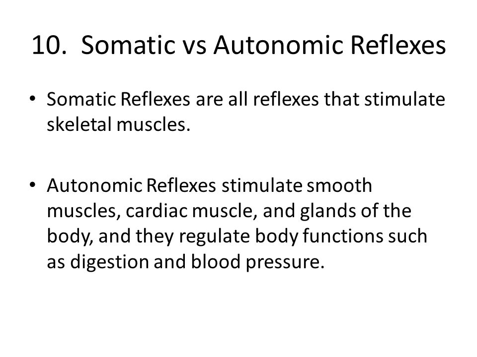 10. Somatic vs Autonomic Reflexes