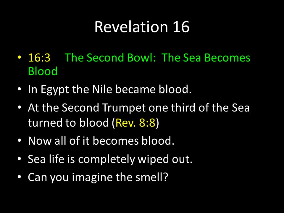 Revelation 16 16:3 The Second Bowl: The Sea Becomes Blood