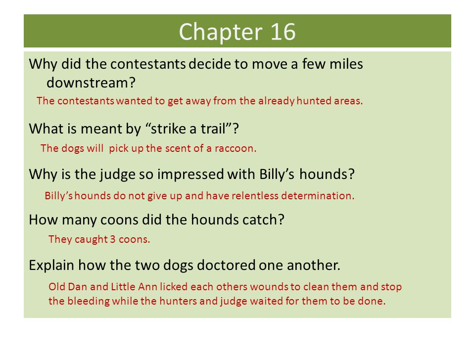 Chapter 16 Why did the contestants decide to move a few miles downstream What is meant by strike a trail