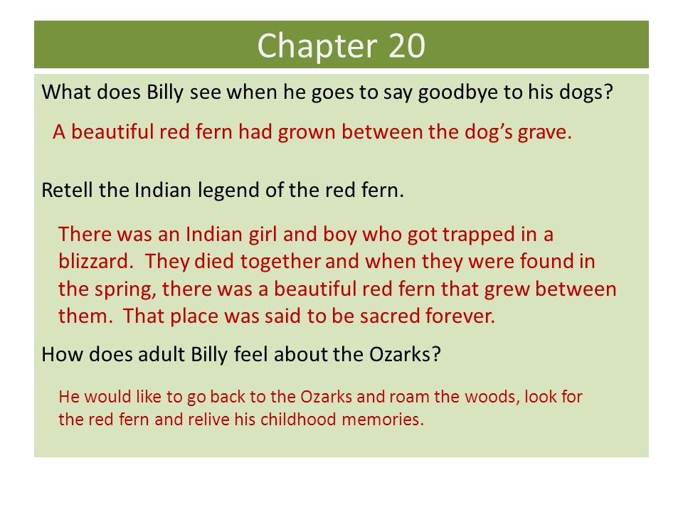 Chapter 20 What does Billy see when he goes to say goodbye to his dogs Retell the Indian legend of the red fern.