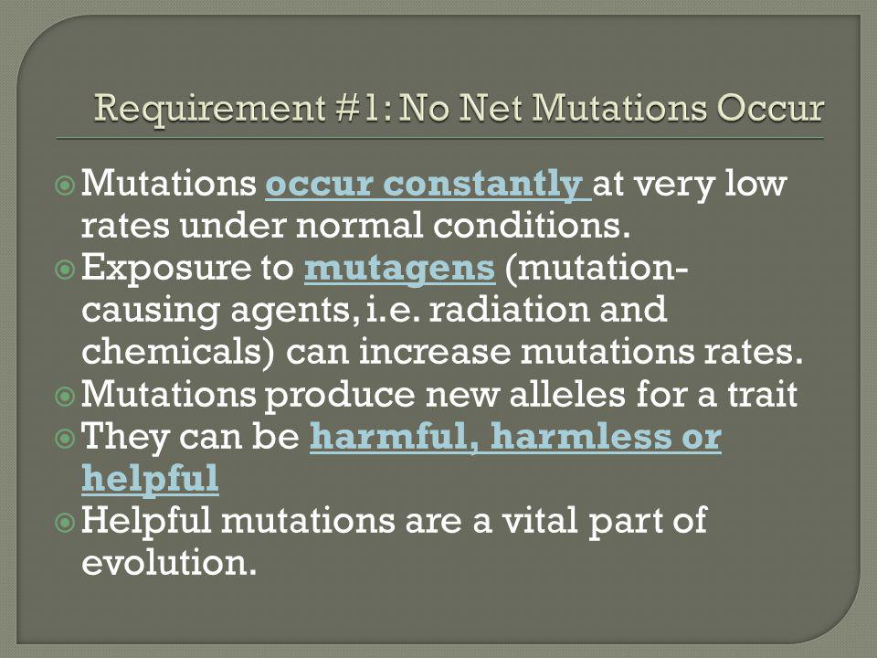 Requirement #1: No Net Mutations Occur
