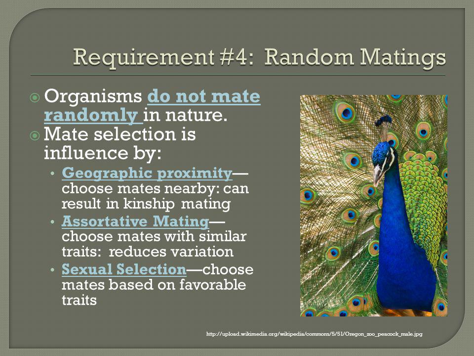 Requirement #4: Random Matings