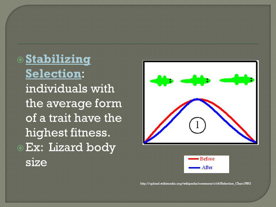 Stabilizing Selection: individuals with the average form of a trait have the highest fitness.