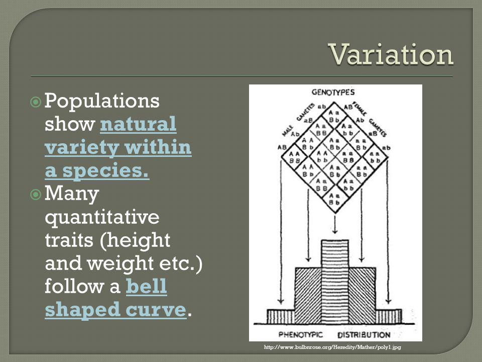 Variation Populations show natural variety within a species.