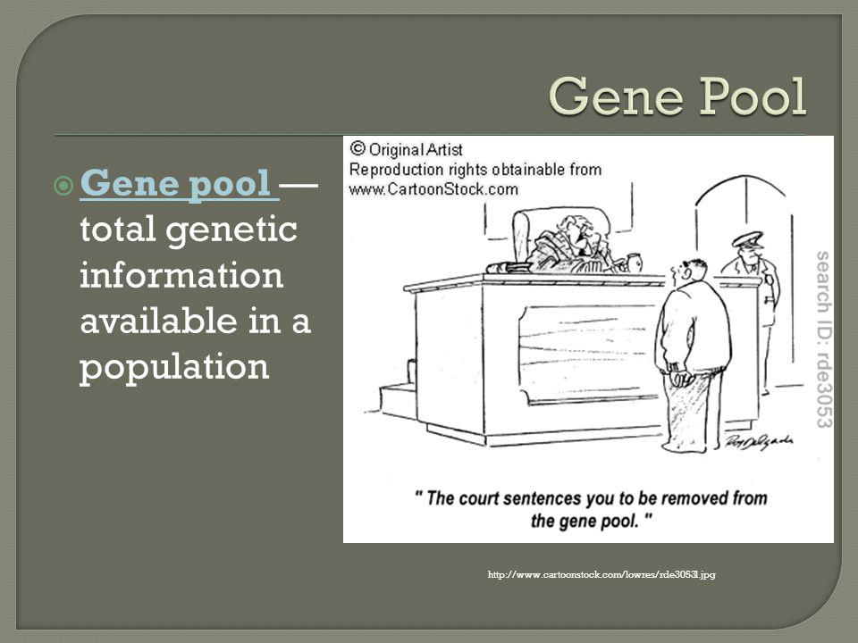 Gene Pool Gene pool —total genetic information available in a population.