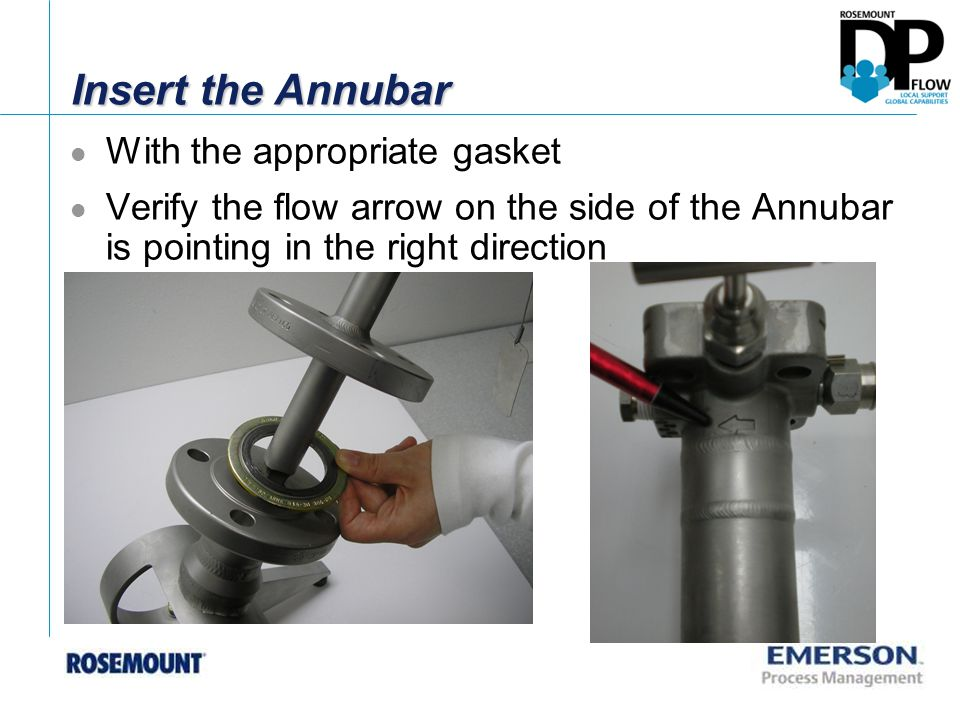 Insert the Annubar With the appropriate gasket