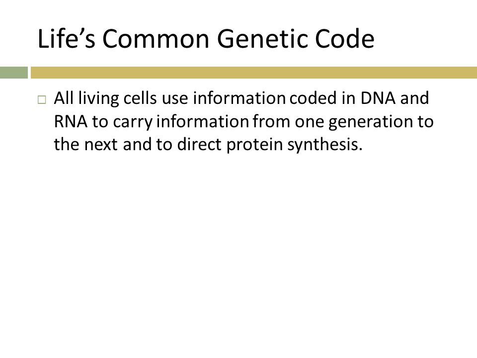 Life's Common Genetic Code