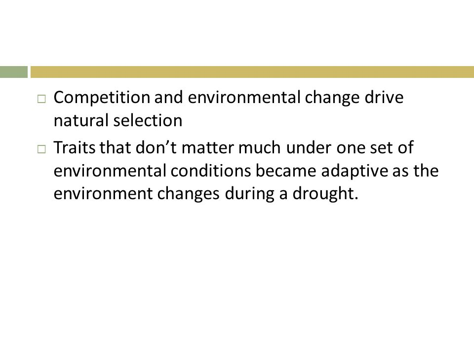 Competition and environmental change drive natural selection