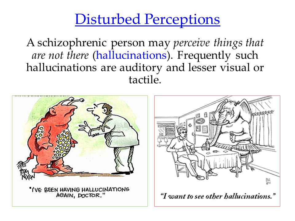 Disturbed Perceptions