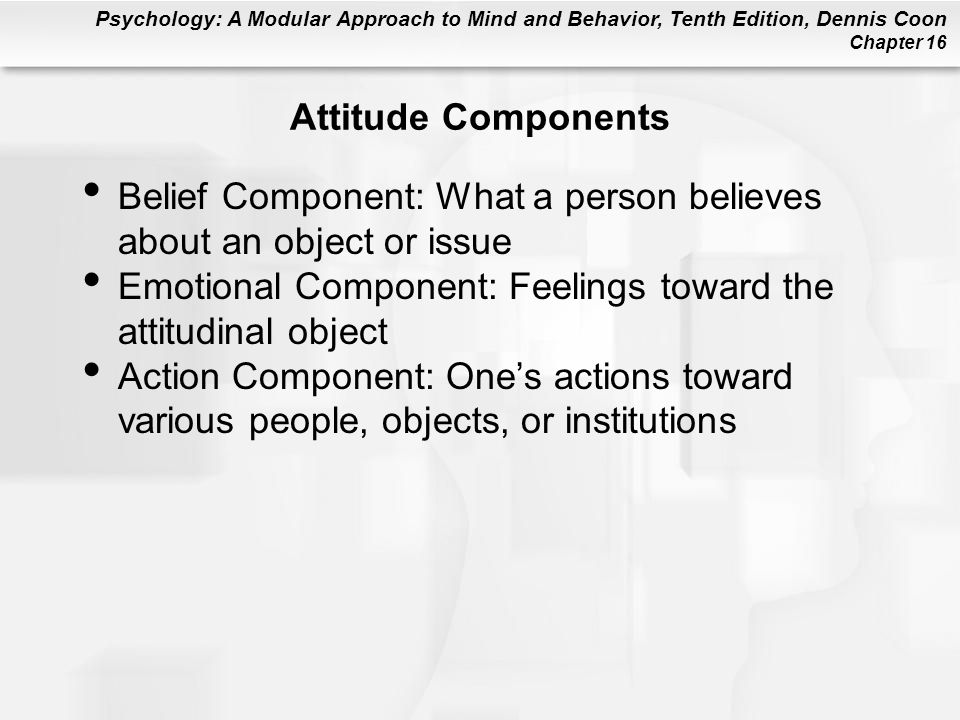 Attitude Components Belief Component: What a person believes about an object or issue. Emotional Component: Feelings toward the attitudinal object.