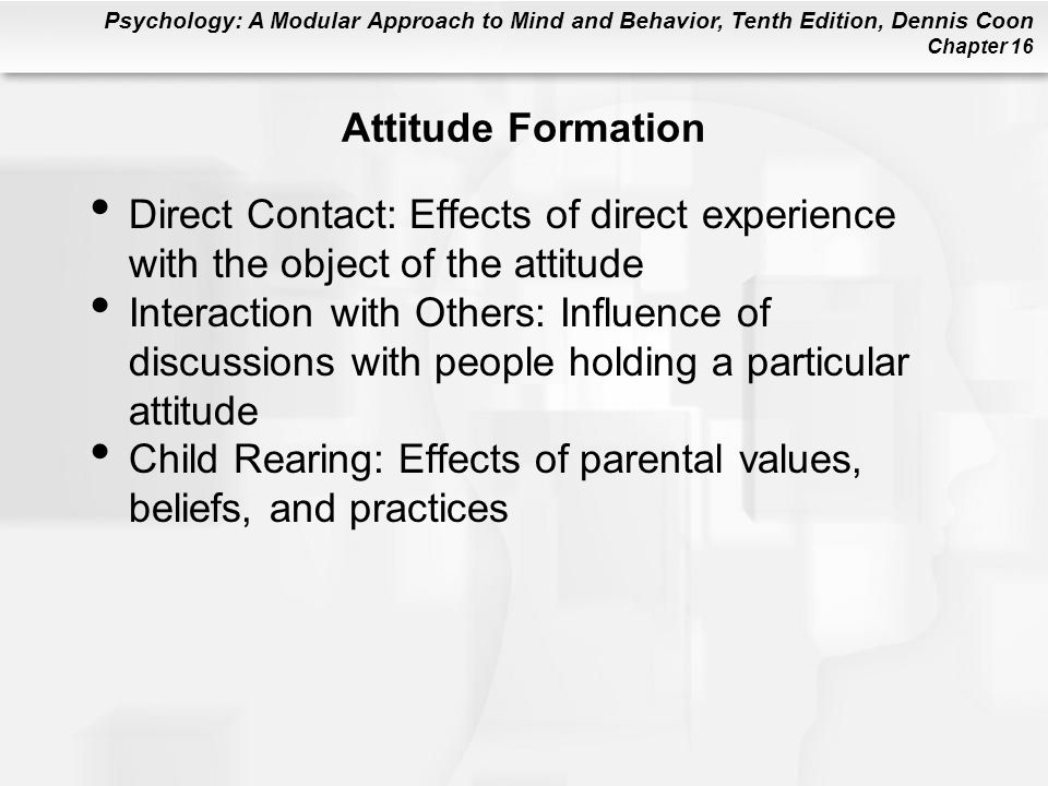 Attitude Formation Direct Contact: Effects of direct experience with the object of the attitude.