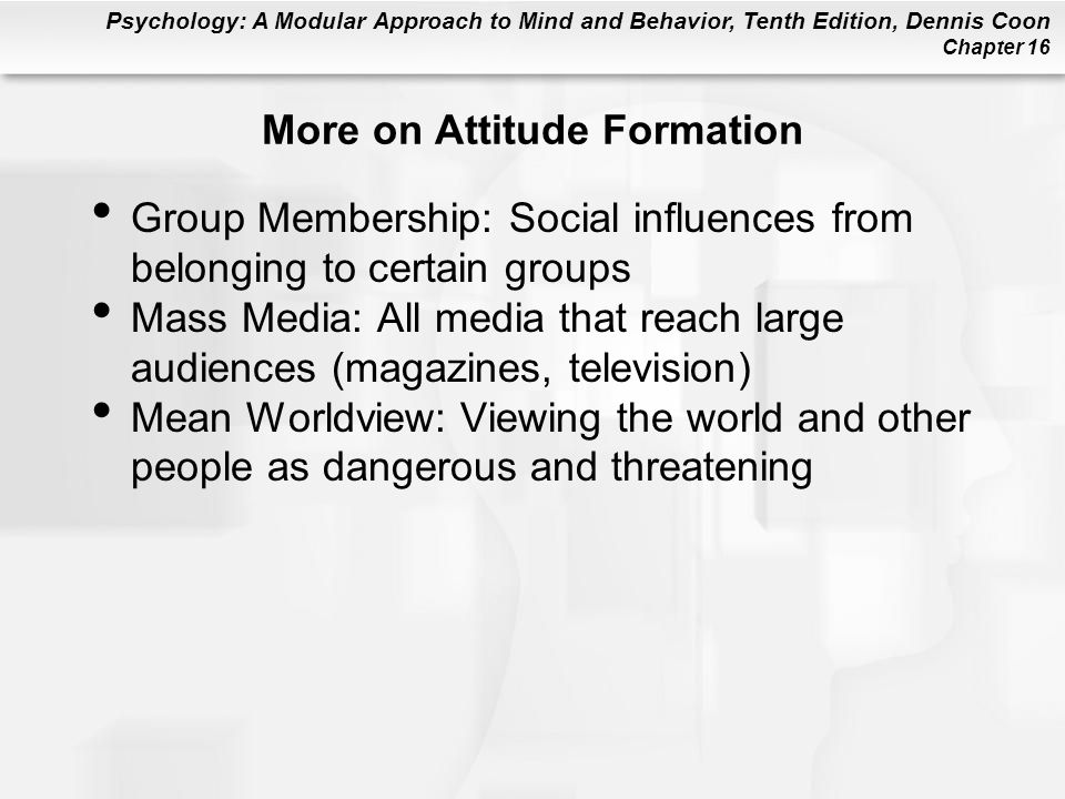More on Attitude Formation