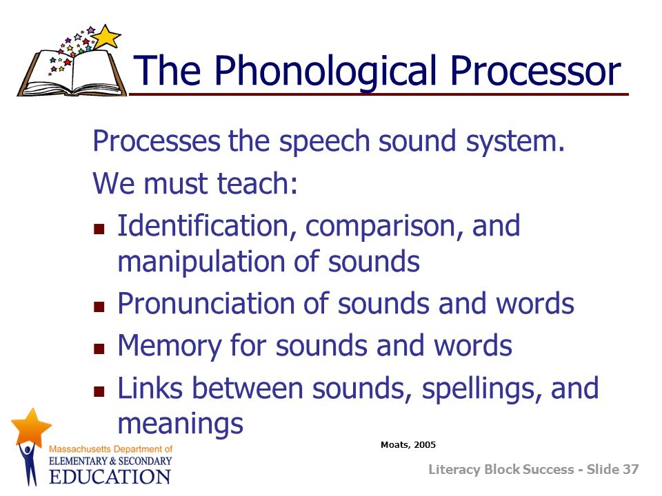 The Phonological Processor