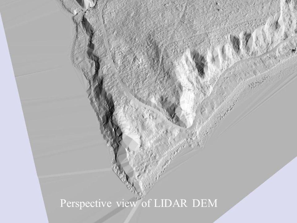 Perspective view of LIDAR DEM