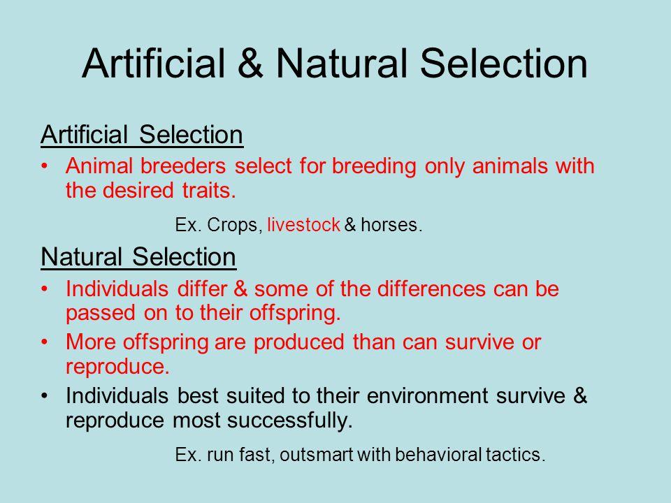 Artificial & Natural Selection