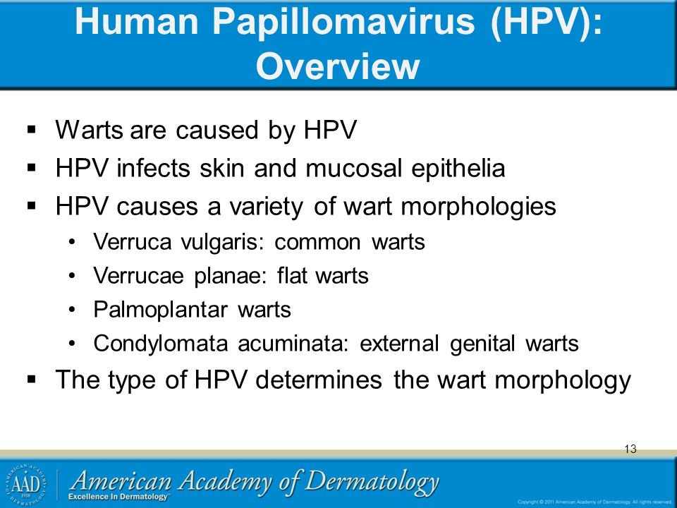 Human Papillomavirus (HPV): Overview