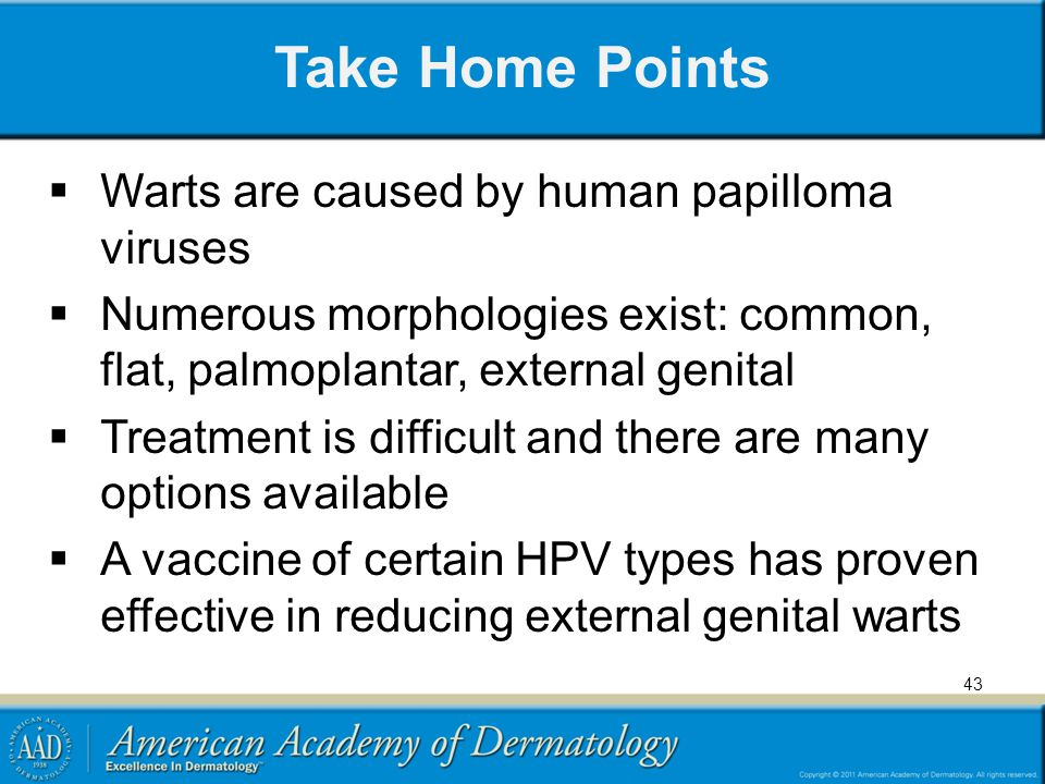 Take Home Points Warts are caused by human papilloma viruses