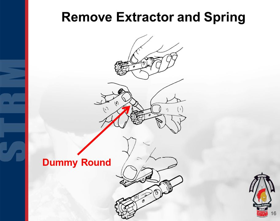 Remove Extractor and Spring