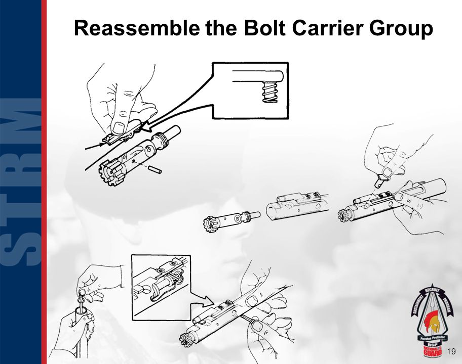 Reassemble the Bolt Carrier Group