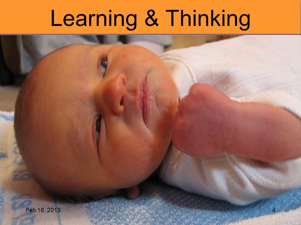 Learning & Thinking Feb 16, 2013