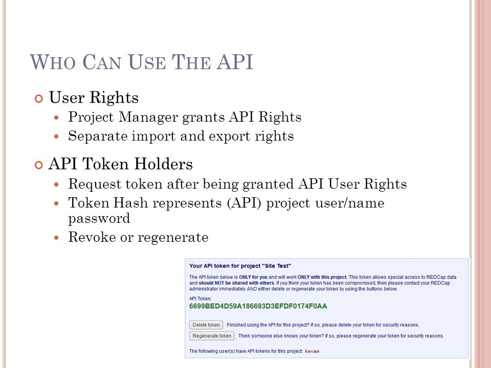 Who Can Use The API User Rights API Token Holders
