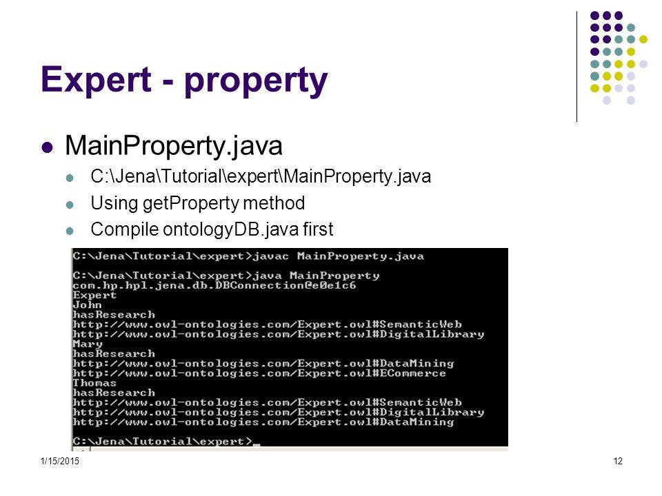 Expert - property MainProperty.java